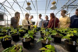 career-options-horticulture