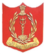 A F M C College Of Nursing , Pune Logo
